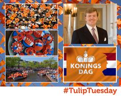 22/04 time to improve your King's day knowledge, the biggest Dutch festivity of them all; 1. 1st celebration of its type was 31/08/1885, Princess's Day to celebrate the 5th birthday of Princess Wilhelmina. 2. Becoming Queen's Day in 1890 the date remained 31/08 until 1949 when Queen Juliana ascended the throne, then 30/04 until 2013. 3. The history of the famous 'vrijmarkts' (free-markets) goes back to 1980, where instead of offering gifts to the King people can sell their wares.