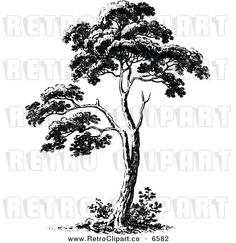 Vector Clipart of a Retro Black and White Tree