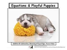 Equations and Playful Puppies: True or False is a fun lesson designed to encourage student understanding  of the meaning of the equal sign, and  if equations are true or false and other CCSS objectives. This lesson of 54 pages includes optional directions to the teacher, four assessment worksheets, keys, and student assessment checklist.Note: Lesson activities can be completed as a whole group or small group with the instructor using a SmartBoard, white board and adobe reader, projector or docum...