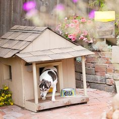 Doggie Dwelling : Leftover building material also provided a new space for the family dog. A removable roof makes it easy to clean. :: i love awesome dog houses. :3