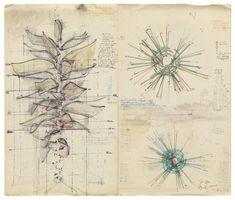 Stefan Bertalan / Sunflower & Sunflower Layout…