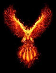 phoenix bird with burning effect Phoenix Artwork, Phoenix Wallpaper, Phoenix Images, Phoenix Drawing, Phoenix Wings, Phoenix Bird Tattoos, Phoenix Tattoo Design, Dark Phoenix, Phoenix Xmen