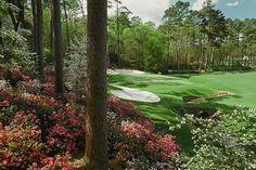 Golf my-interests
