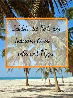 Salalah im Oman ist ein spannendes Urlaubsziel. Wir stellen es euch gemeinsam mit Reiseblogger Johannes Klaus von Reisedepeschen vor.