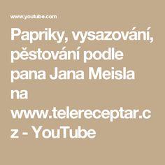 Papriky, vysazování, pěstování podle pana Jana Meisla na www.telereceptar.cz - YouTube