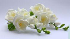цветы фрезии фото -06