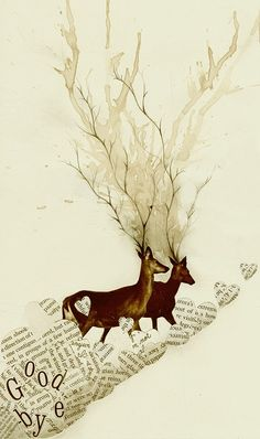 Find images and videos about art, drawing and illustration on We Heart It - the app to get lost in what you love. Art And Illustration, Illustrations, Deer Art, Moose Art, Brush Pen Art, Oh Deer, Woodland Creatures, Woodland Animals, Art Graphique
