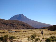 Girl in the Atacama highlands