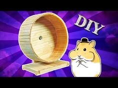 DIY Popsicle stick wheel for hamster Baby Hamster, Diy Hamster House, Hamster Toys, Hamster Stuff, Popsicle Stick Crafts, Popsicle Sticks, Craft Stick Crafts, Chinchilla, Hedgehog Care