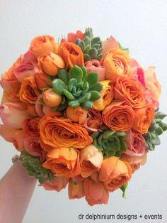 orange succulents | visit drdelphinium com