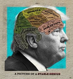 A Picture of a Stable Genius (Blueski_22_01_18) Another newspaper / magazine poltical editorial illustration hot off the press by the phenomenal Blueski. Enjoy. Thanks. . . . #editorial #magazine #newspaper #online #politics #illustration #collage #trump #usa #phrenology #psychology #psychiatry #news #artistsoninstagram #graphicdesign #politicalart #satire #humor #humour #londonart