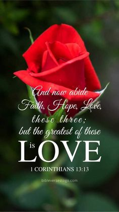 1 Corinthians (NKJV) - And now abide faith, hope, love, these three; but the greatest of these is love. Prayer Scriptures, Bible Prayers, Prayer Quotes, Biblical Quotes, Religious Quotes, Bible Verses Quotes, Faith Quotes, Wisdom Quotes, Bible Verses About Love