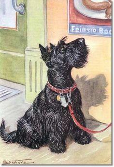 Unser Freund - Color Plate From Unser Freund - Der Hund of Scottish Terrier Painting