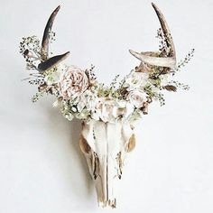Antlers are woodland-inspired cool rustic pieces that bring coziness. Antlers make accessory holders and natural jewelry hangers. You can add some décor with diy decoration ideas using antler. Home Decor Accessories, Decorative Accessories, Deer Decor, Cow Skull Decor, Deer Horns Decor, Deer Skull Art, Decorating With Deer Antlers, Deer Skull Drawing, Antler Art