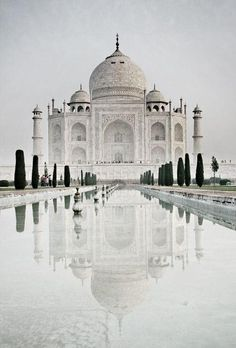 Taj Mahal - So beautiful!  It looks like an ice sculpture in this picture!