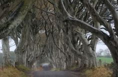 Game of Thrones Locations Tour including Westeros and Giant's Causeway - TripAdvisor