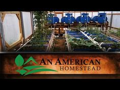 The Fall Greenhouse - An American Homestead