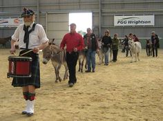 Ross Jones drummed in the donkeys making an unforgettable entrance of the 22 donkeys and one mule. Courtesy: The Donkey & Mule Society of New Zealand (Inc.). Winton (New Zealand).