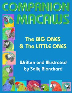Companion Macaws: The Big Ones and the Little Ones .pdf  30 pgs, $12 Illustrated throughout with Sally's illustrations Topics include: potentially the gentlest of all companion parrots, controlling BIG noise, don't become afraid of that big beak, regression weaning, macaw talking ability, and much more