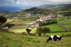 Sao Jorge Azores-I would like to call this place home.