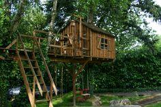 Backyard, Cabin, House Styles, Home Decor, Homemade Home Decor, Yard, Cabins, Backyards, Cottage