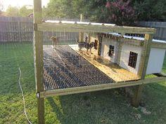 Image result for dog kennels off the ground