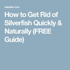 How to Get Rid of Silverfish Quickly & Naturally (FREE Guide)