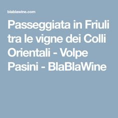 Passeggiata in Friuli tra le vigne dei Colli Orientali - Volpe Pasini - BlaBlaWine