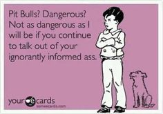 Pit Bulls? dangerous? Not as dangerous as I will be if you continue to talk out of your ignorant informed ass.