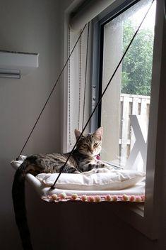window cat hammock with cushion n pompom decorations di jinstan