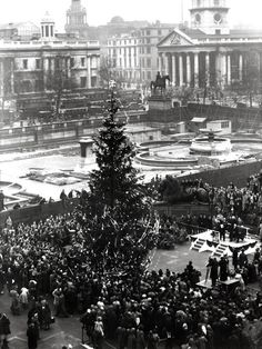 The first Norwegian Christmas tree in Trafalgar Square, London, Every year since Norway has sent a tree in thanks for the UK's support for the country during London History, British History, World History, Uk History, History Class, Vintage London, Old London, Norwegian Christmas, London