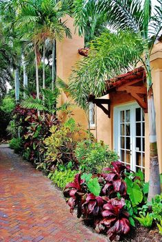 The Ultimate Revelation Of Tropical Landscaping 72