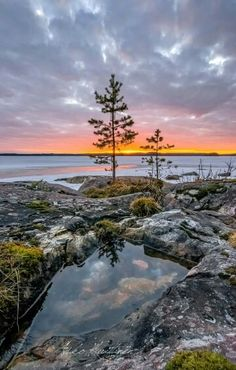 Beautiful Finland by A Kuittinen Beautiful Sky, Beautiful Landscapes, Beautiful World, Beautiful Places, Lake Pictures, Landscape Pictures, Flowering Trees, What A Wonderful World, Amazing Nature