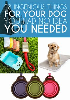Diy Projects: 28 Ingenious Things For Your Dog You Had No Idea You Needed  #FASHION MK BAGS# MICHAEL KORS