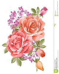 Resultado de imagen para watercolor illustration flowers