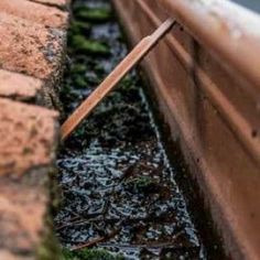 Roof gutter cleaning services Perth. Gutter Cleaning, Perth Western Australia, Cleaning Services, Housekeeping, Maid Services