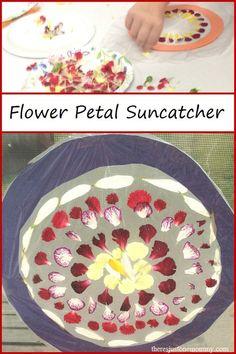 flower petal suncatc