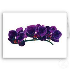 Google Image Result for http://rlv.zcache.co.uk/dark_purple_phalaenopsis_orchids_card-p137711652851968527b21fb_400.jpg