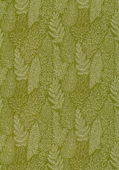 Thibaut - Anna French - AF1366   Pattern STACKHOUSE   Printed Fabrics  Collection Aria  Colorway Olive