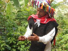MadalBo: Enfoque mercantil de la biodiversidad preocupa en ...