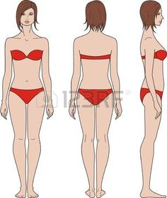 Find Vector illustration of figures, Set of male and female silhouettes. Front, back and side views Stock Images in HD and millions of other royalty-free stock photos, illustrations, and vectors in the Shutterstock collection. Illustration Example, Woman Illustration, Drawing Female Body, Woman Drawing, Jackson Pollock, Body Fat Percentage Women, Body Fat Measurement, Figure Poses, Strength Training Workouts