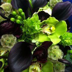 Love these colors!!! #chartreuse #eggplant #dvflora  #handtiedbouquet #theknot  #cymbidium  #bellsofireland  #hypericumberries #scabiosapods #ranunculus  #minicallas  #fiddlefern #hydrangea #floristofyourdreams by pocketfullofposiesflorist