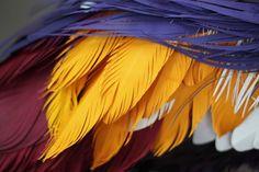 oiseau-papier-09