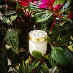 Αντιρρυτιδική κρέμα προσώπου - revital facial cream  #revital #facialcream #avocado #apricot #rosehip #primrose #eveningprimrose #geranium #neroli #insence #nature #naturalbeauty #greek #greekproducts #wrinkles #moisturizer  #vitamine #oil