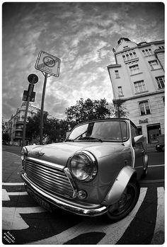 Mini black and white ... love the fish-eye lens shot