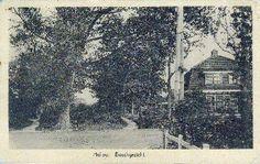 De Kerkelaan, met achter ons de Holleweg, ca. 1938
