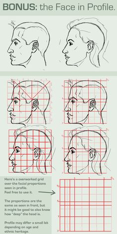 Face Proportions: PROFILE VIEW by =FOERVRAENGD | #drawing #tutorial #training #creative #paper #pen #design #character #illustration #basics < found on www.deviantART.com pinned by an #advertising agency from #Hamburg / #Germany - www.BlickeDeeler.de | Follow us on www.facebook.com/Blickedeeler