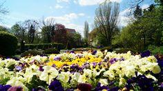 Kawałek Francji w Łodzi, czyli Park Matejki Dolores Park, Travel, Viajes, Destinations, Traveling, Trips