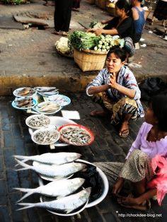 Vendeuse de poisson, Yangoon – Birmanie