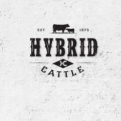 Hybrid Cattle Beef Farming, Retro Bus, Sale Logo, Meat Shop, Beautiful Farm, Farm Signs, Modern Logo, Best Face Products, Logo Design Inspiration